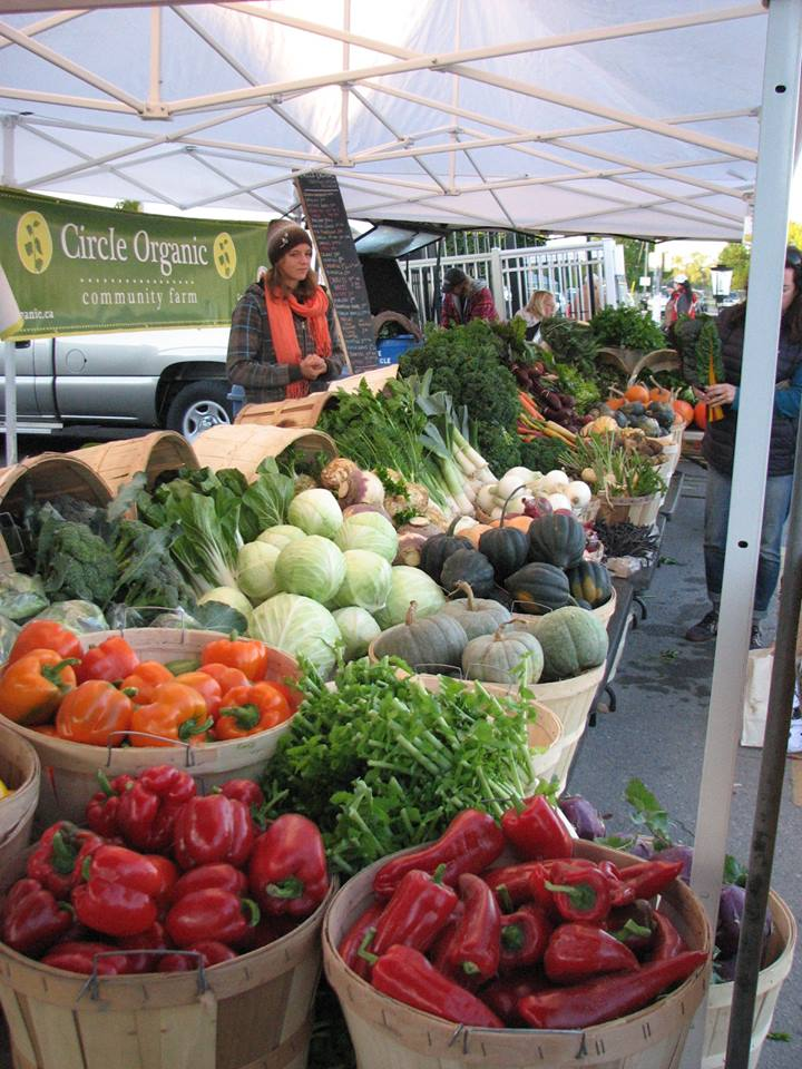 Circle Organics will be providing the ingredients for this celebration of harvest.