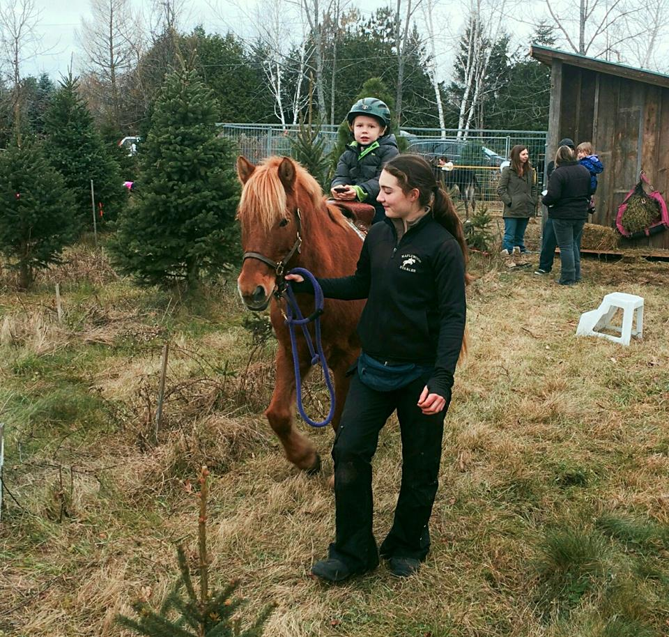 Tree expert and pony whisperer, Julie Barrett, takes some down time at the petting zoo. Don't let her gentle demeanor fool you -- she also wields a mean hacksaw.